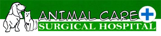 Animal Care & Surgical Hospital